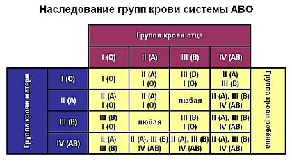 Анализ крови на принадлежность евреи анализ крови vbrjgkfpvf